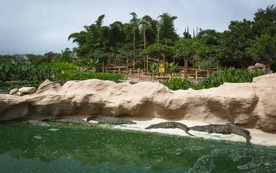 Tour à l'aventurier Crocoparc Agadir